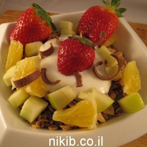 גרנולה עם יוגורט ופירות